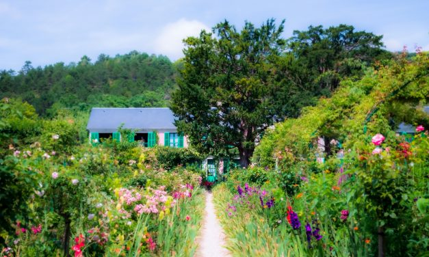 Want to feel good? Get into your garden